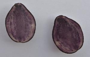fotografia Farebné zemiaky